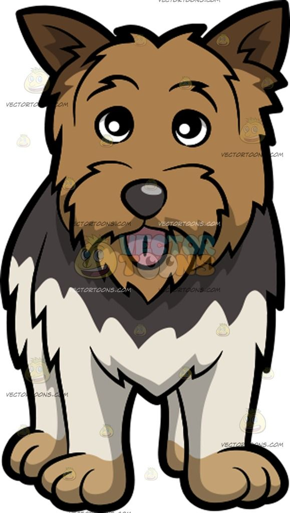svg black and white stock Beard clipart scruffy. Transparent free for