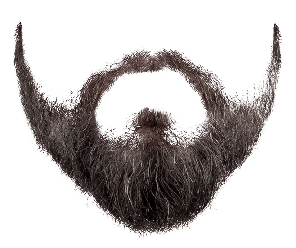 jpg royalty free Grey free on dumielauxepices. Beard clipart sketch