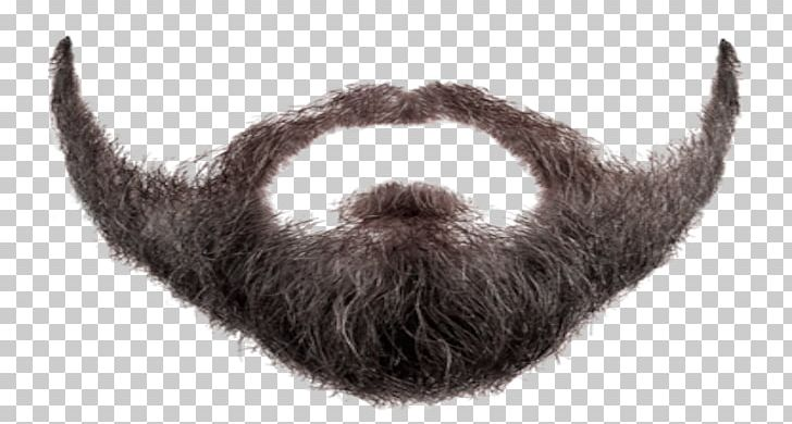 image free library Desktop png alpha cat. Beard clipart texture.