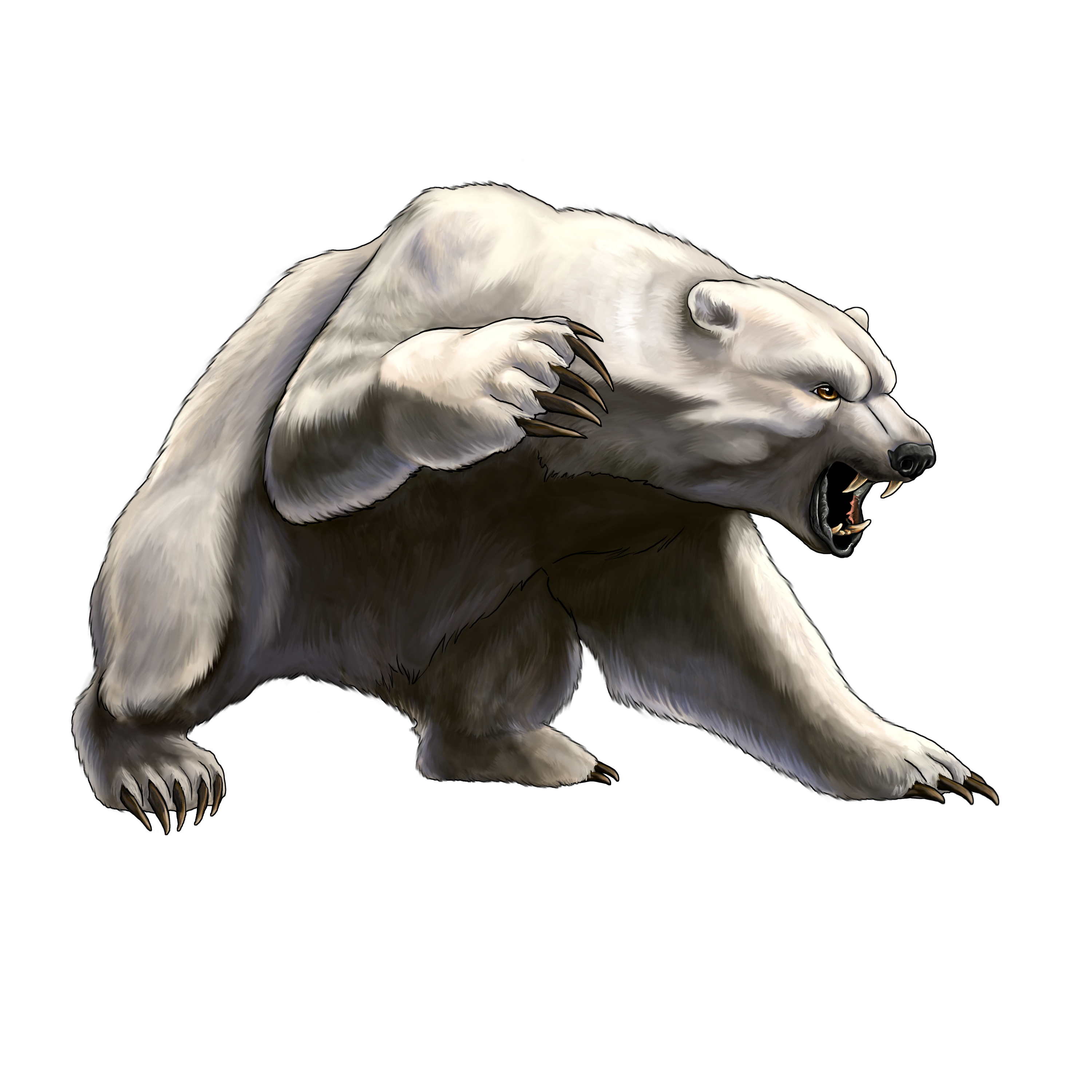 banner Angry white png free. Grizzly clipart wild bear