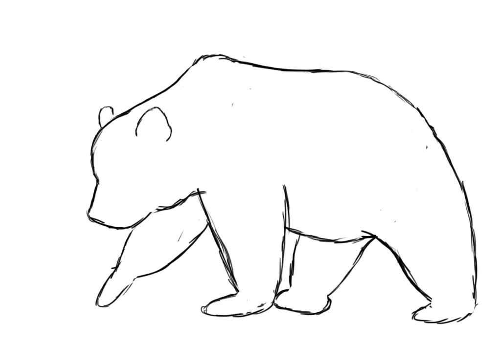 svg freeuse Bears drawing. How to draw a
