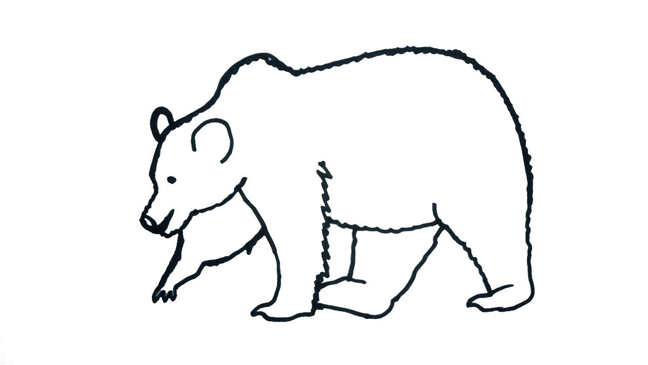 clip freeuse library How to draw a. Bears drawing