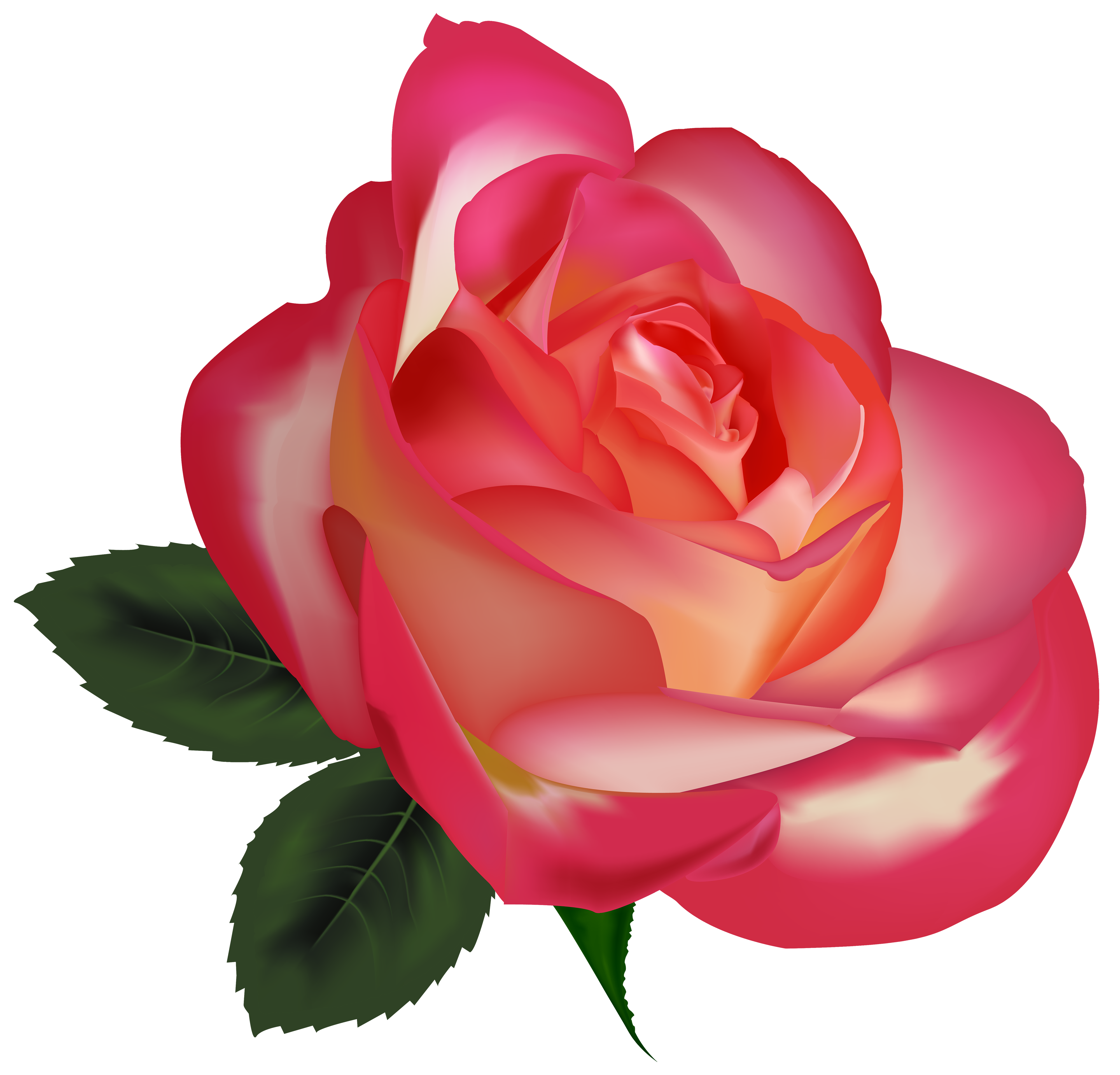 jpg transparent download Beautiful clipart. Rose png image best