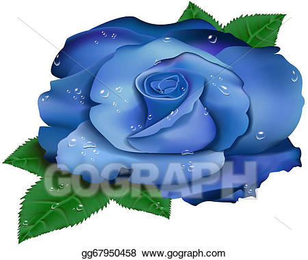 image freeuse download Beautiful clipart blue object. Clip art rose stock.