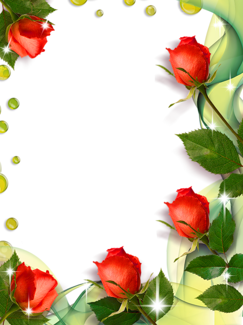 jpg library Beautiful clipart dead rose. Transparent photo frame with.