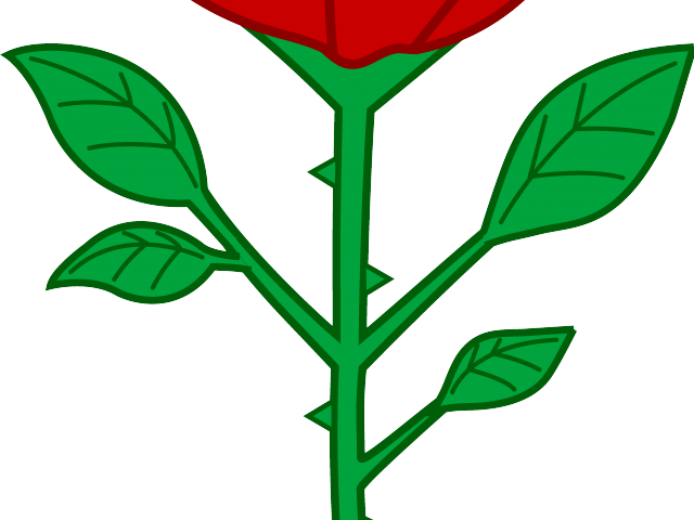 png royalty free White free on dumielauxepices. Beautiful clipart dead rose.