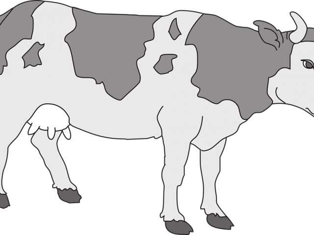 image royalty free Beef clipart beaf. Free on dumielauxepices net