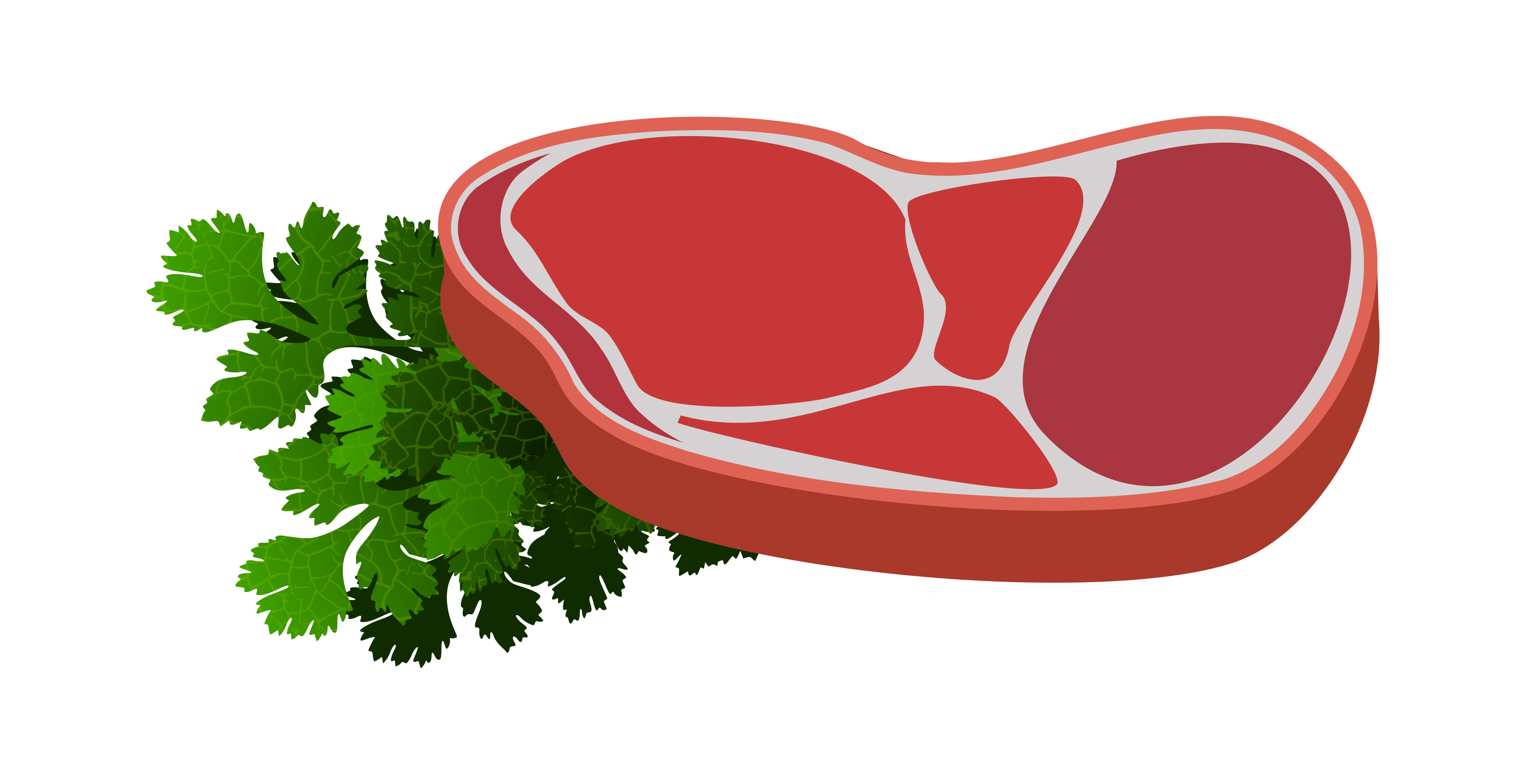 vector freeuse download Raw Steak clipart
