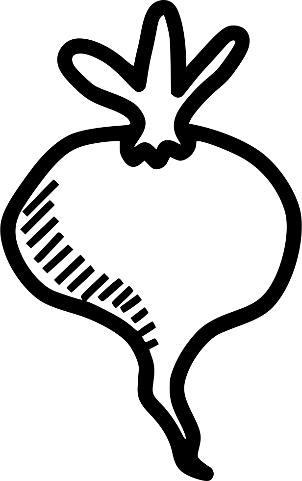 graphic black and white stock Beet drawing clip art. Root plant spring food