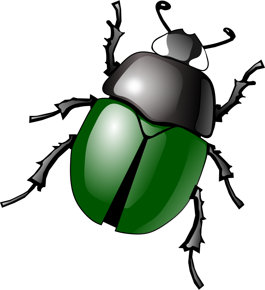 banner library Beetle clipart. .