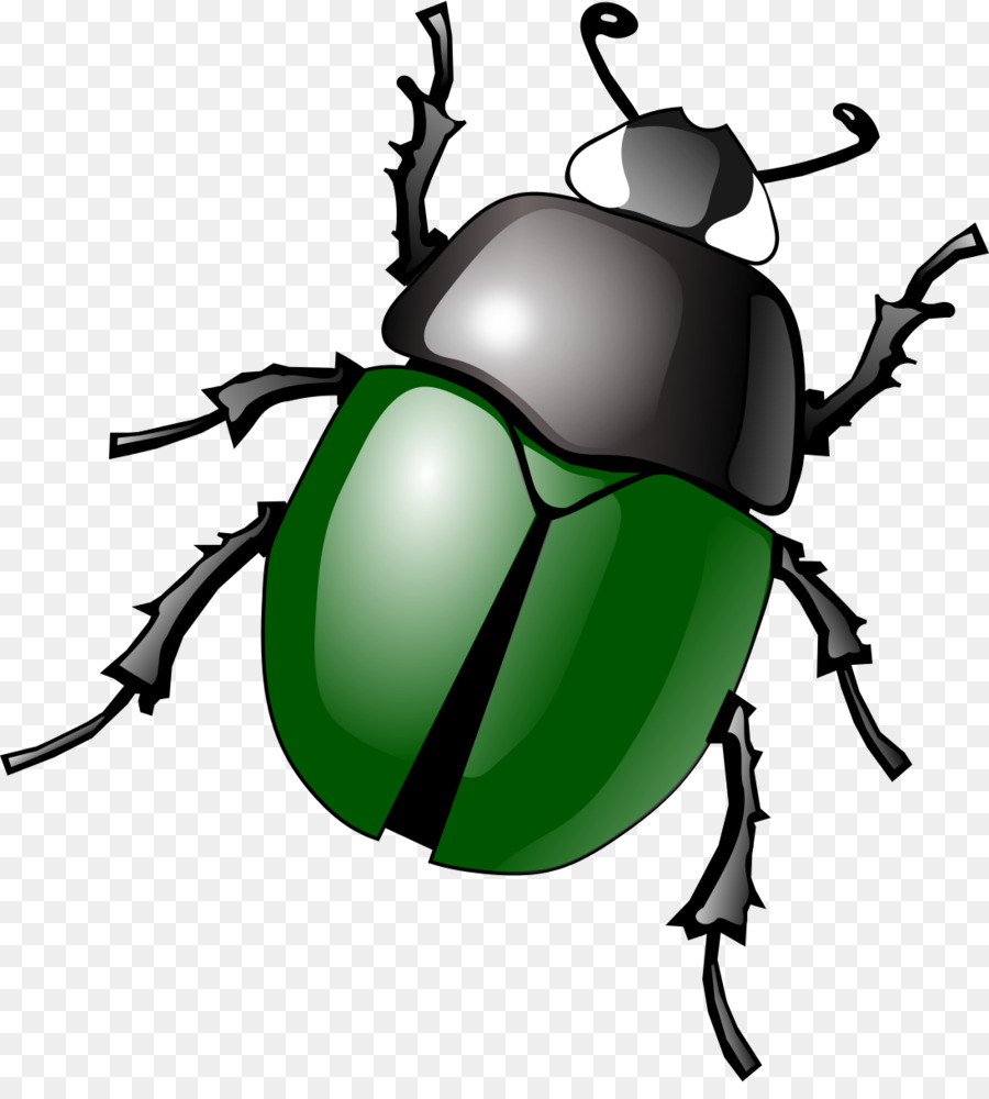 png freeuse download Beetle clipart. Leaf fly ladybird graphics.
