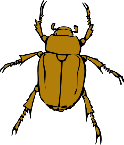 jpg royalty free stock Beetle clipart. Bug clip art at