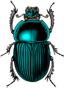 clipart free library Beetle clipart. Dung insect free on.