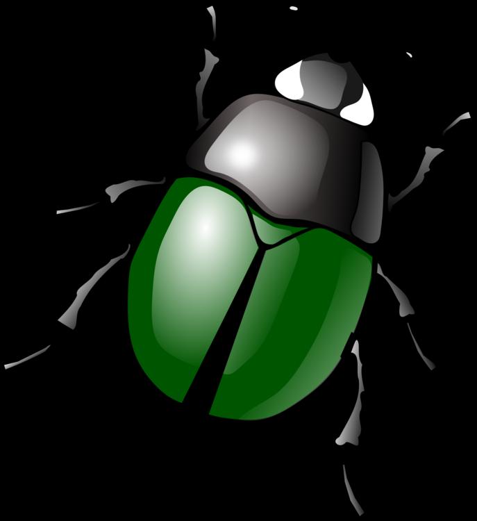 graphic free stock Ladybird japanese rhinoceros dung. Beetle clipart arthropod.