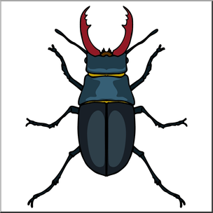 clip royalty free Beetle clipart stag beetle. Clip art insects color.