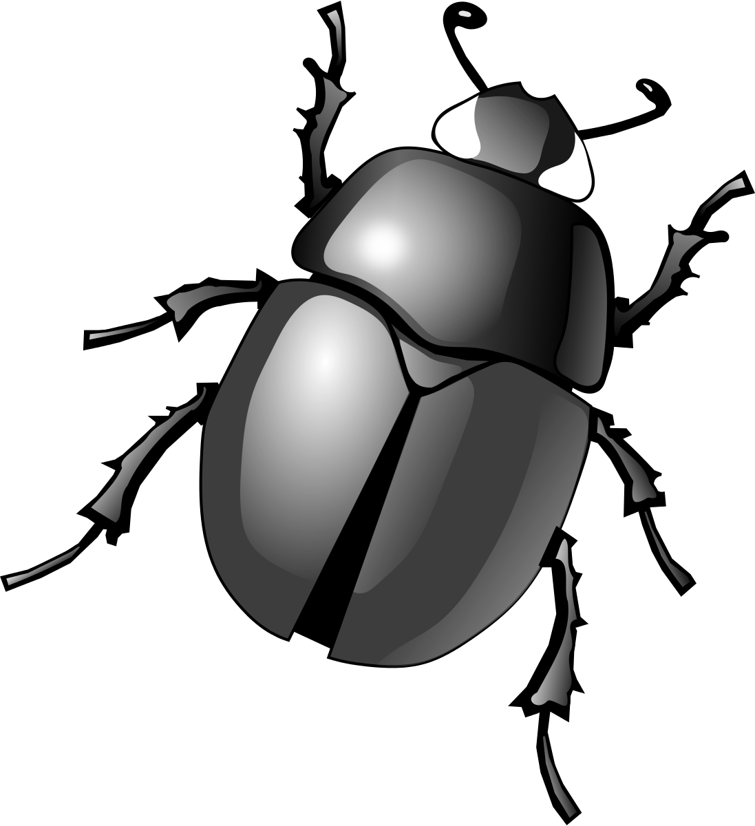 png library library Bug clipart beetle. Dung clip art transprent