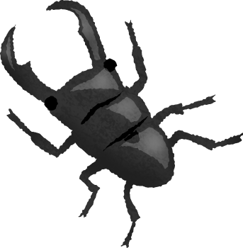 png transparent library Beetle clipart stag beetle. Free illustrations illustorium.