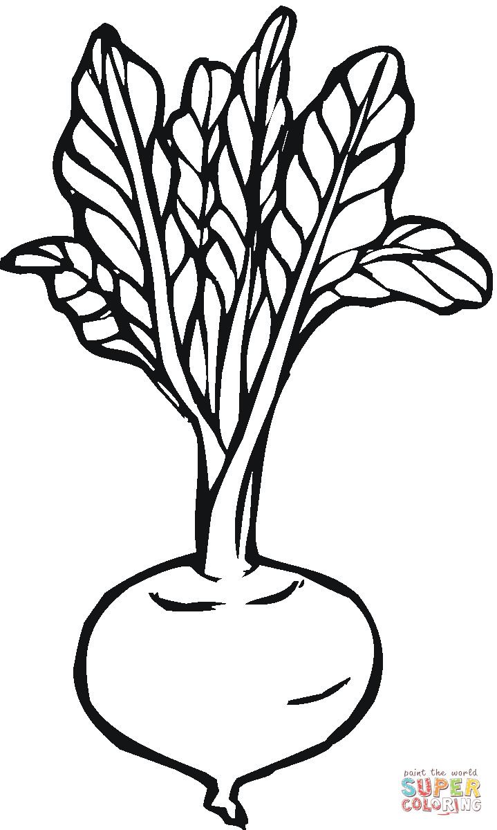 png transparent library Beets drawing speaker. Free download on ayoqq