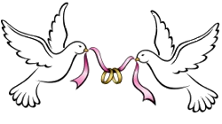 graphic library stock Wedding Dove PNG HD Transparent Wedding Dove HD