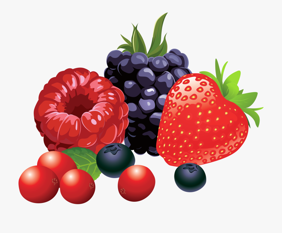 svg transparent Berries clipart. Collection of free download