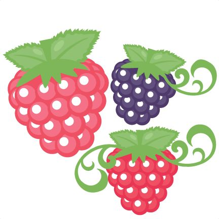 library Berries clipart cute. Berry free download best