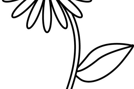 clipart library download Flower Shop Near Me