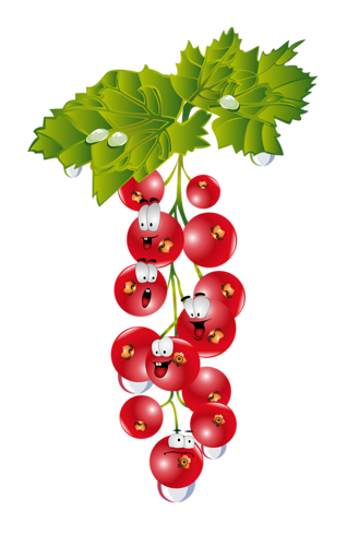 clip transparent download berry drawing currant #90087791