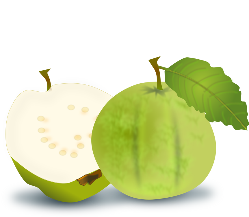 graphic stock Common guava Fruit Juice Lemon free commercial clipart