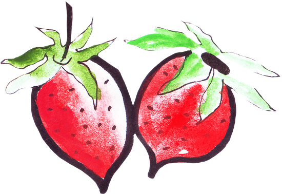 clip freeuse library Hand drawing of fruits