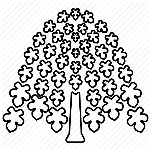 picture library Trees outlines