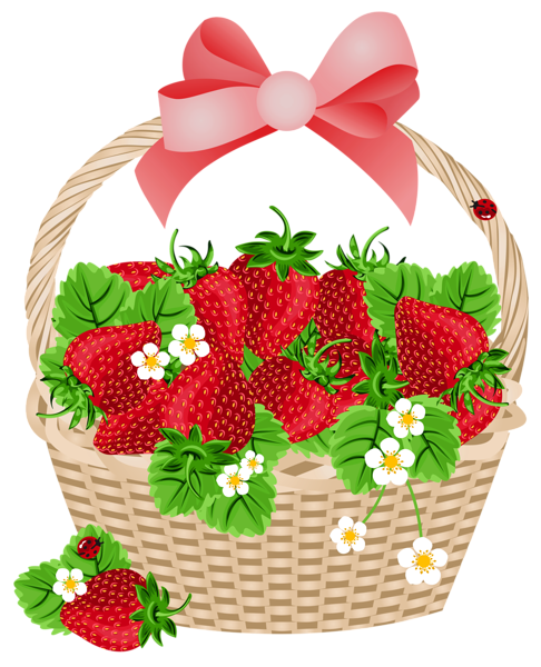 banner transparent Berry clipart berry basket. With strawberries transparent png