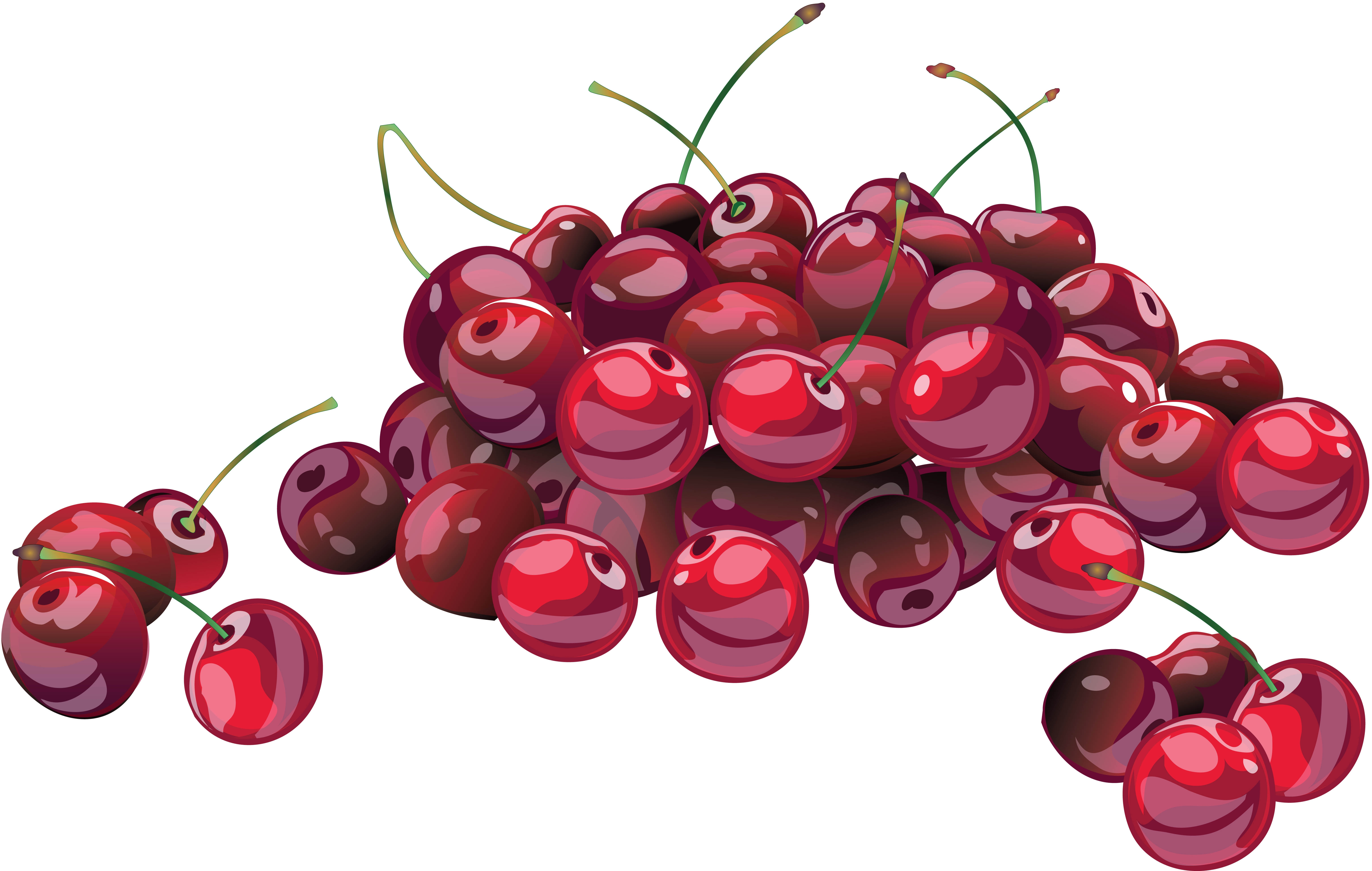 banner freeuse download Wallpaper branch many x. Berry drawing cherry