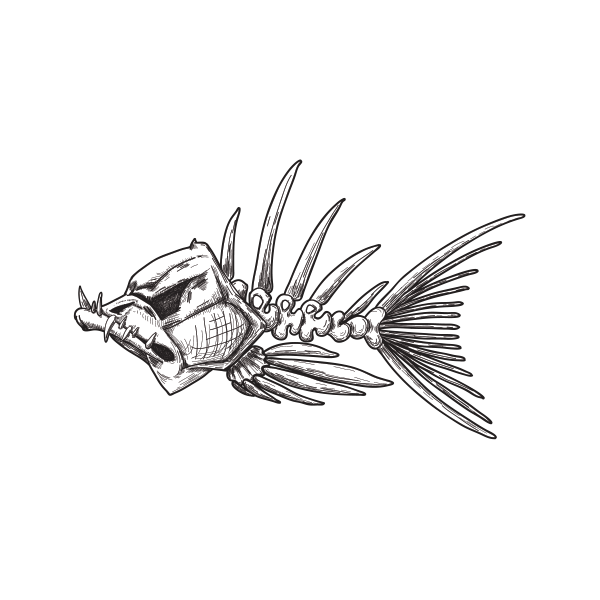 clipart library download Printed vinyl Fishbone Sketch
