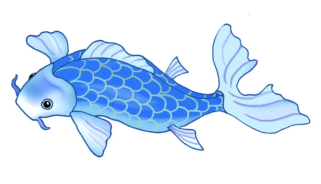 picture library koi fish drawing very blue