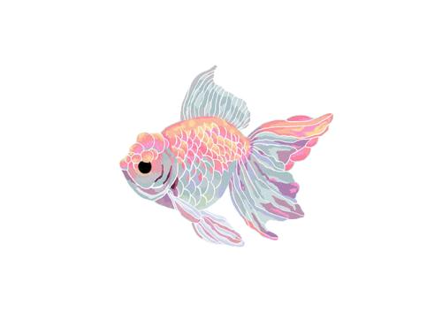 clip royalty free library gold fish drawing