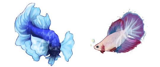 svg library download betta fish art