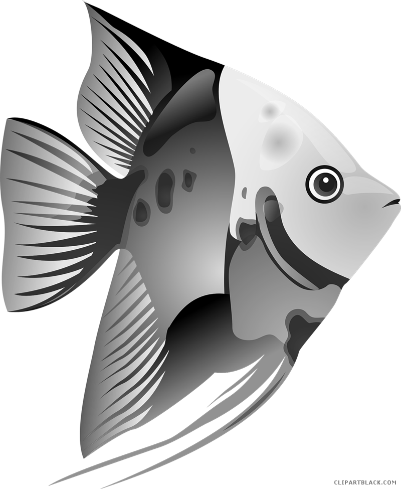 vector free Betta fish graphic freeuse download