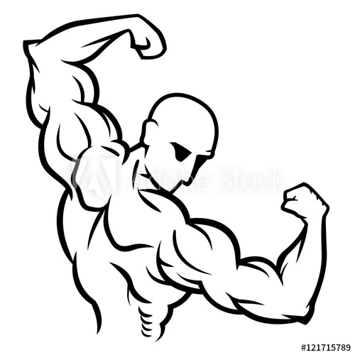 jpg royalty free library Bicep drawing bodybuilding. Bodybuilder pose back double