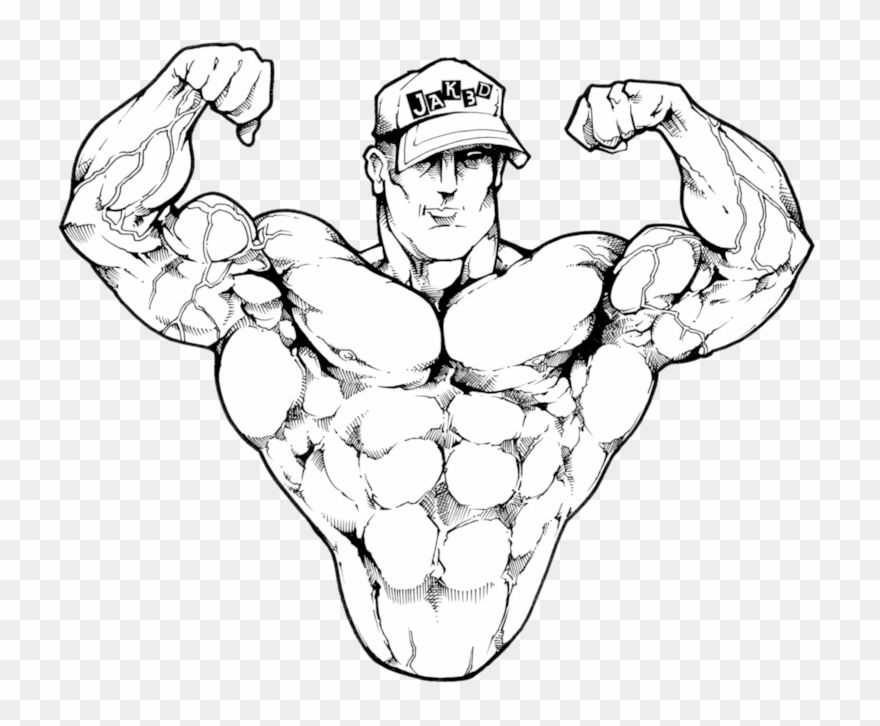 clip art freeuse download At paintingvalley com explore. Bicep drawing male
