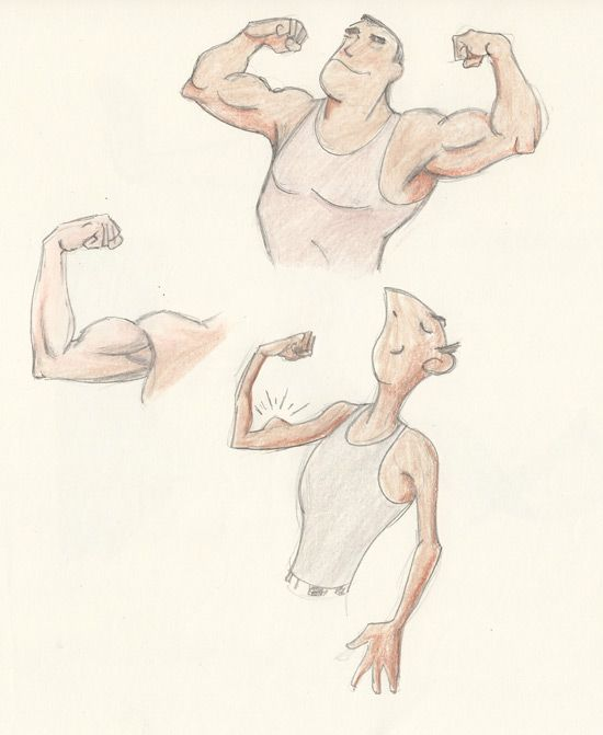 clip black and white Bicep drawing pencil. Cartoon anatomy the biceps