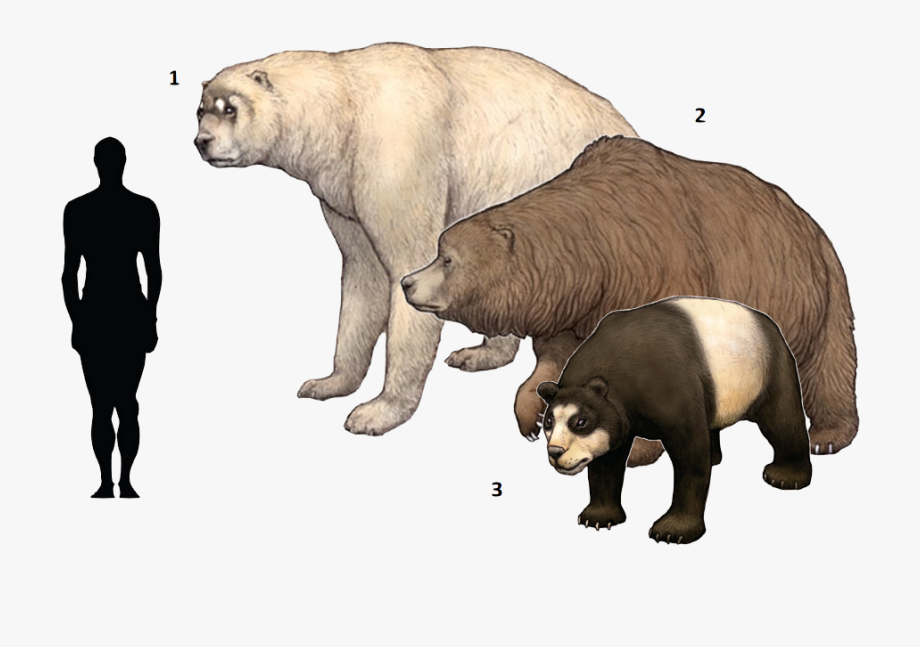 banner black and white download Big clipart cave bear. Extinct ice age animal.