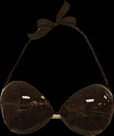 clip royalty free library Coconut Clipart coconut bra