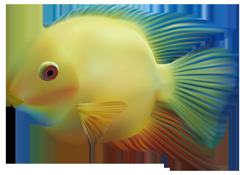 png transparent download Biology clipart organism. Exotic fish png best.