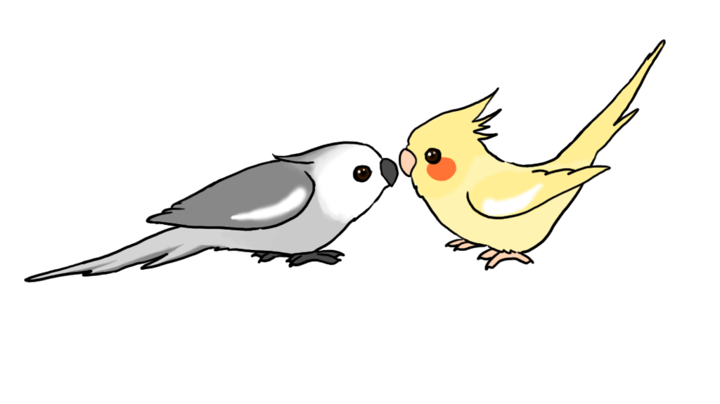 clipart transparent Cute Cartoon Cockatiels by Water