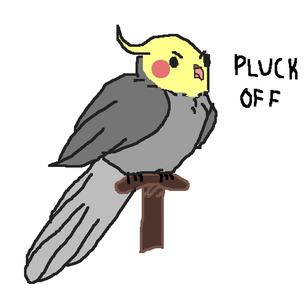 clip transparent Birb drawing cockatoo. Pixilart for my friend