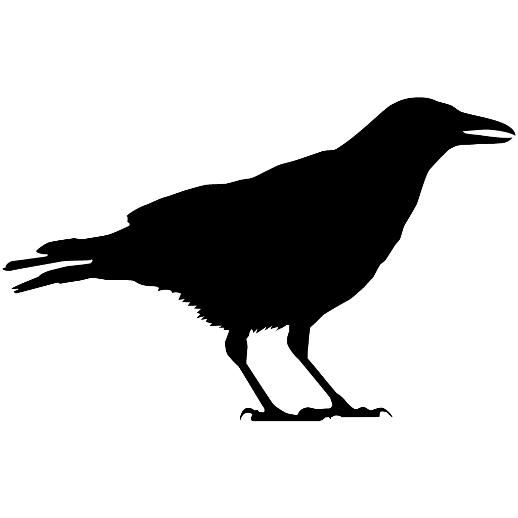 banner black and white Browse by shape all. Transparent crow raven