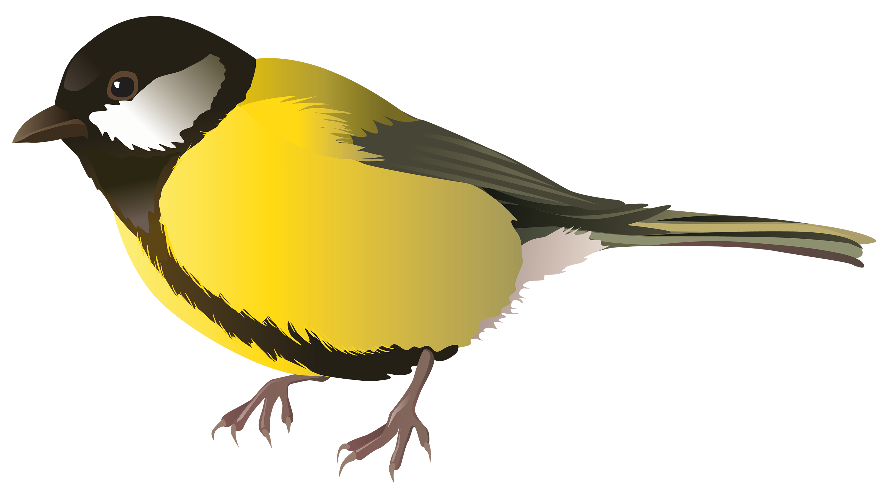 png black and white Yellow png best web. Bird clipart.