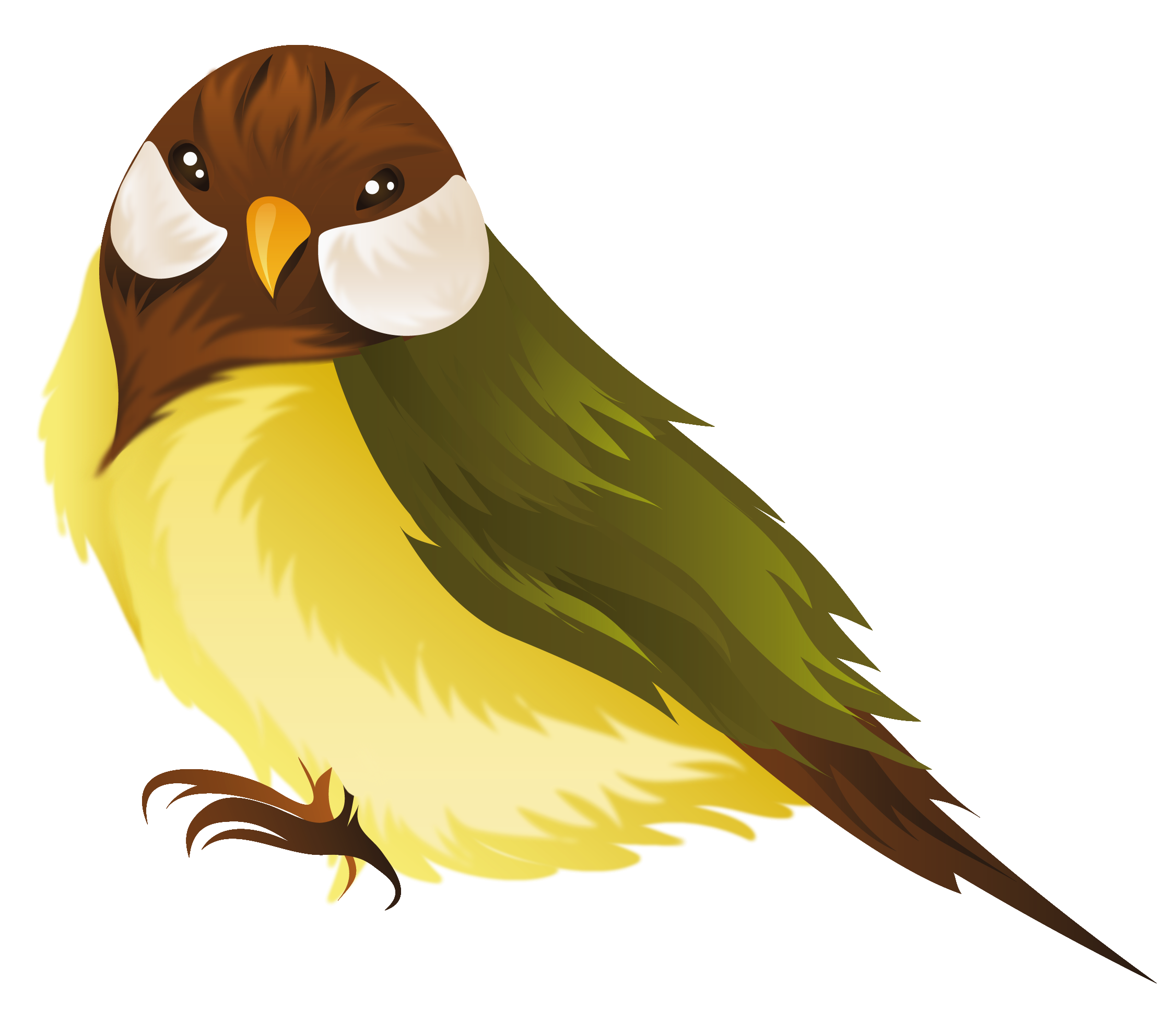 clip art royalty free library Png image gallery yopriceville. Bird clipart.