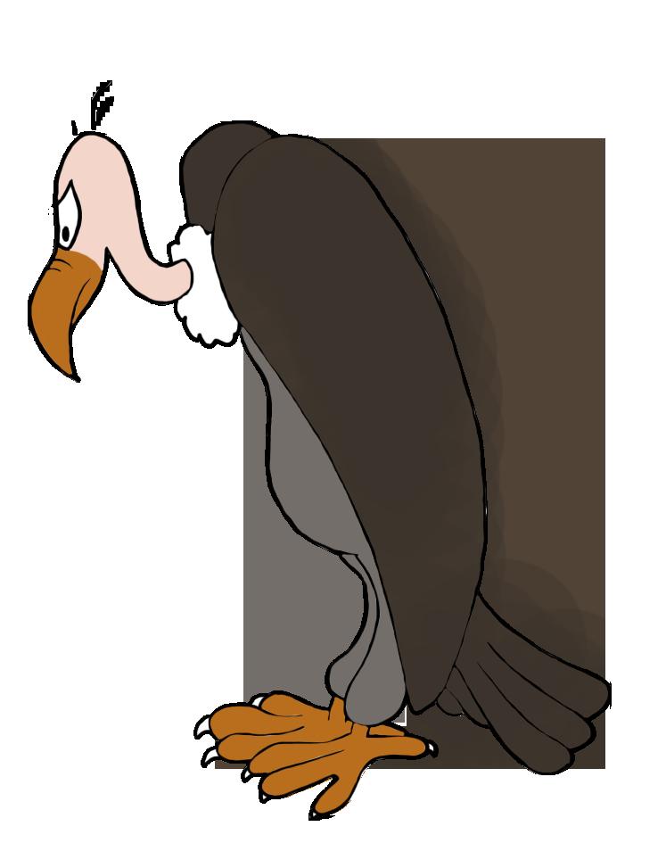 clipart royalty free stock Bird clipart buzzard. Of prey transparent free.