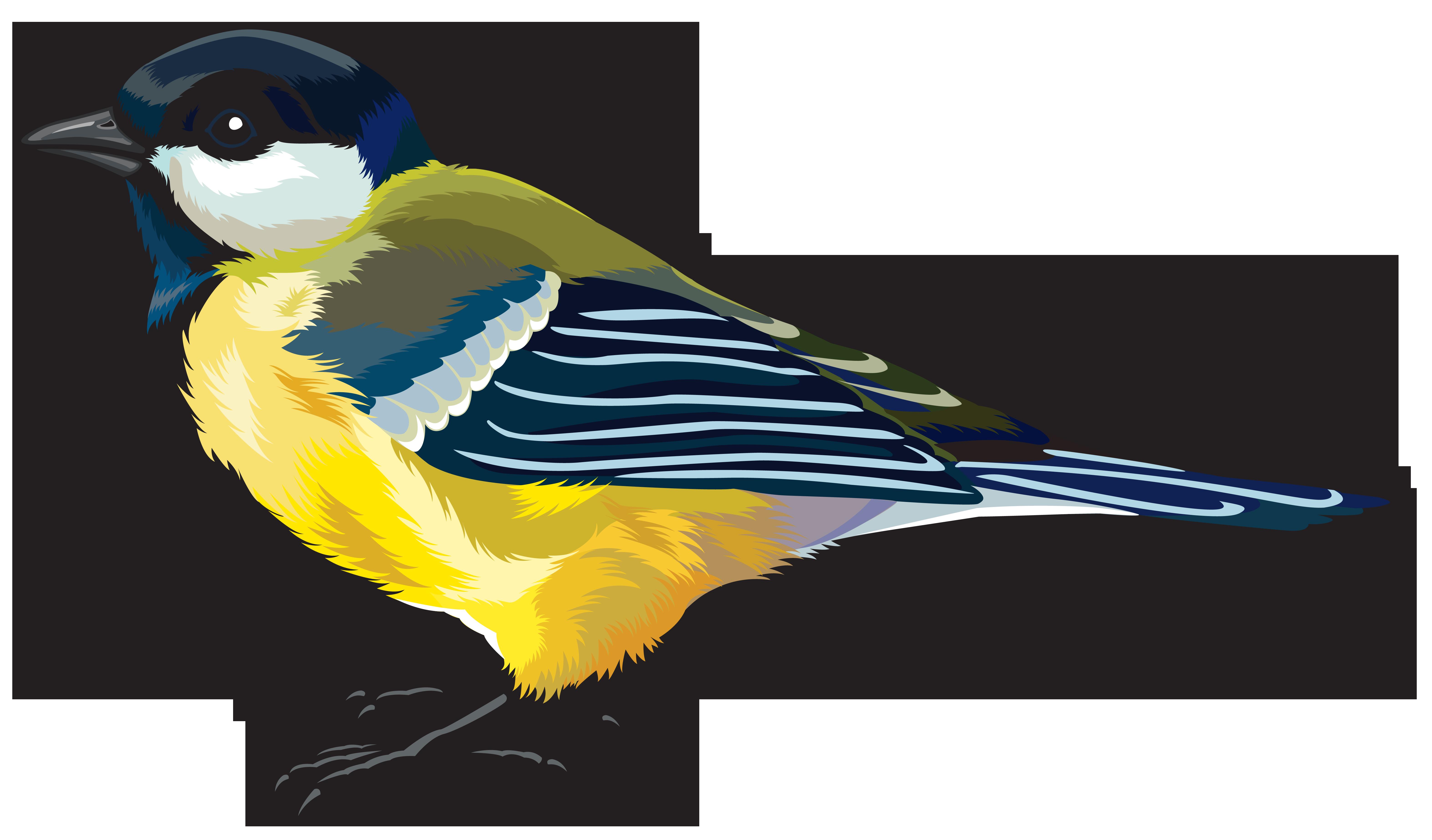 svg transparent Large Bird PNG Clipart Image